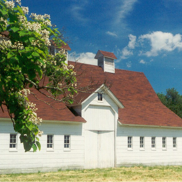 Site Rental - Barn